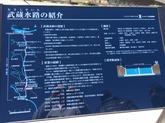 28年2月武蔵水路④.JPG