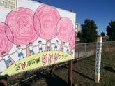 29年3月 ソメイヨシノ植樹③.JPG