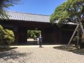 29年5月 遠山記念館②.JPG