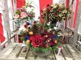 29年12月 花の冬季品評会②.JPG