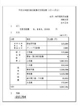 30年度政務活動費.jpg